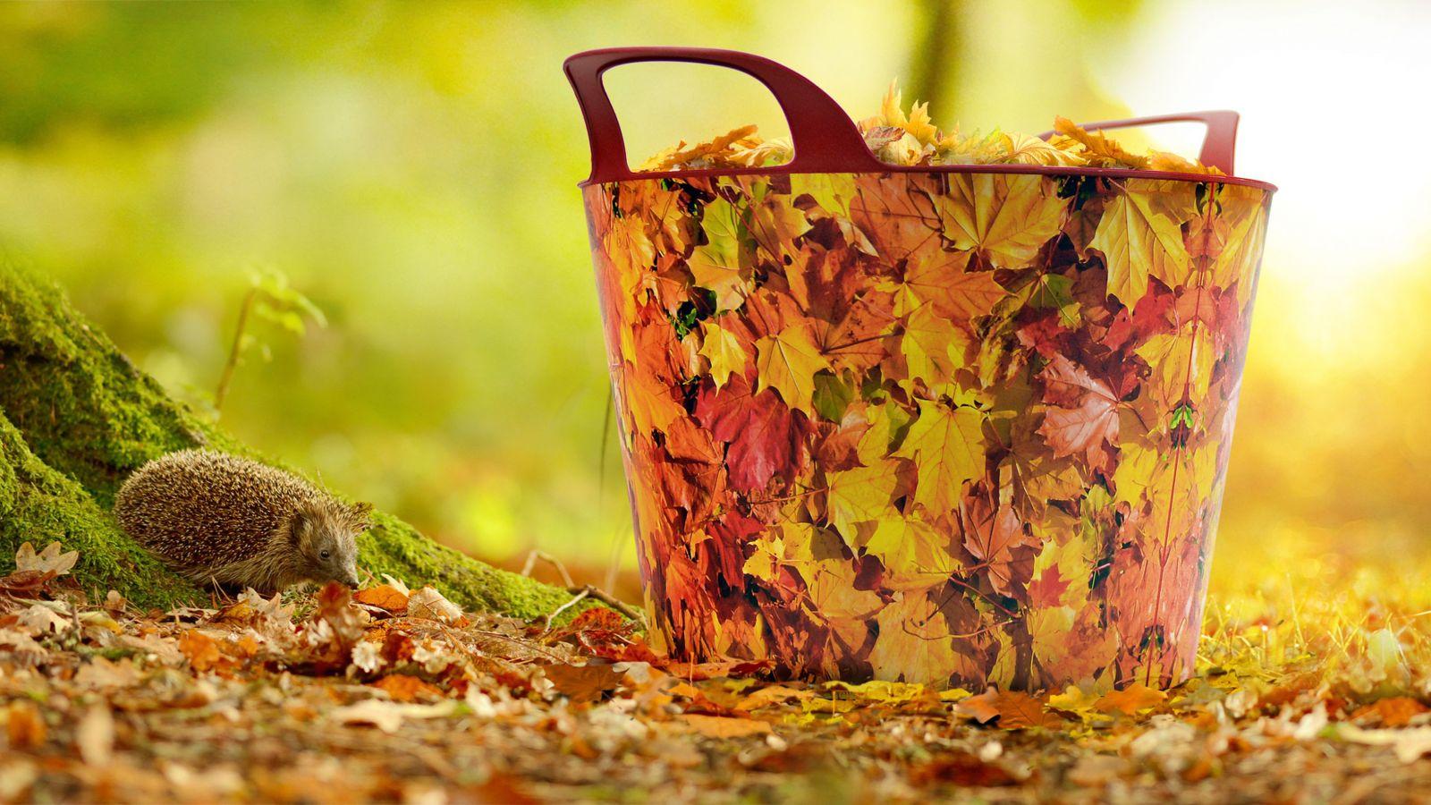 Univerzální koš na dřevo s dekorem podzim